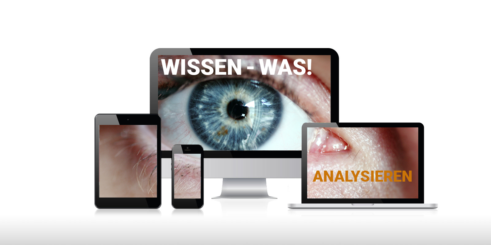 Die Weboptimierungs-Analyse – STEP1